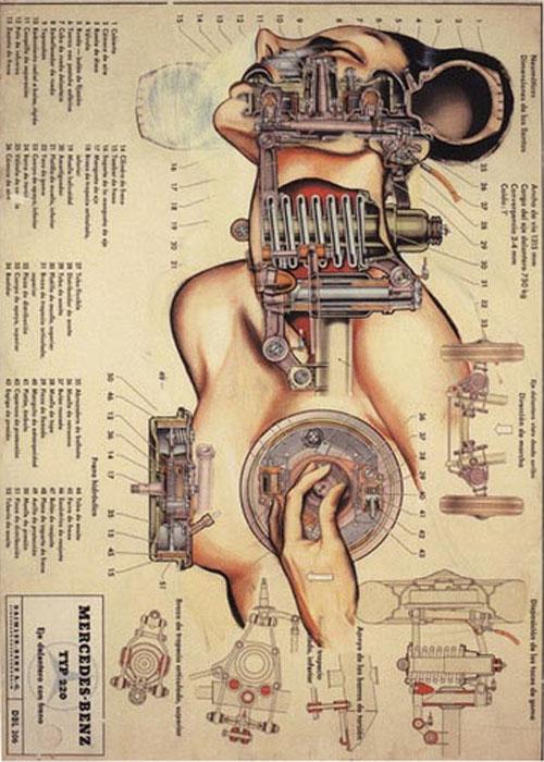 fernando-vicente_anatomias